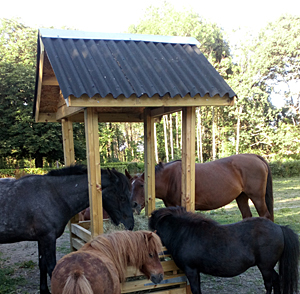 Wooden Hay Bale Feeder With A Roof American Quarter